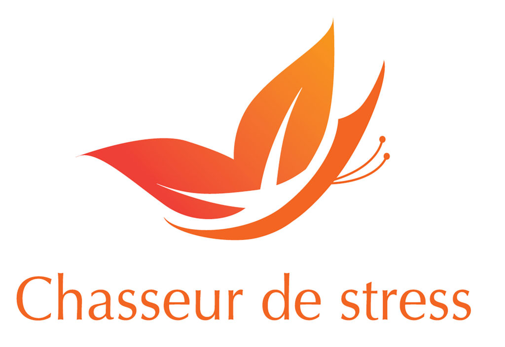 logo chasseur de stress orange HD.jpg