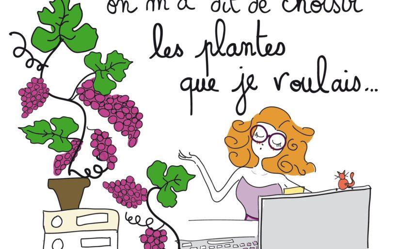 Julie plantes