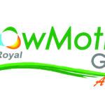 Flow Motion Golf